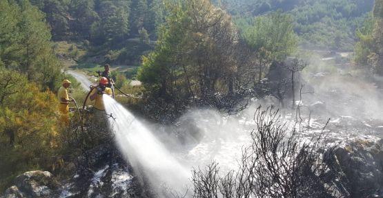 Orman yangını yerleşim yerine sıçramadan söndürüldü