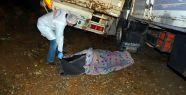 Babayla oğlun kamyonu birbirine girdi:...