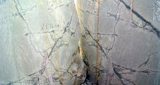 Kavaklıdere'nin yüz akı, kral dairelerini süslüyor