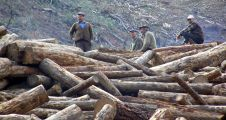 Orman İşletme'den Yatağan'a 4,5 milyon lira