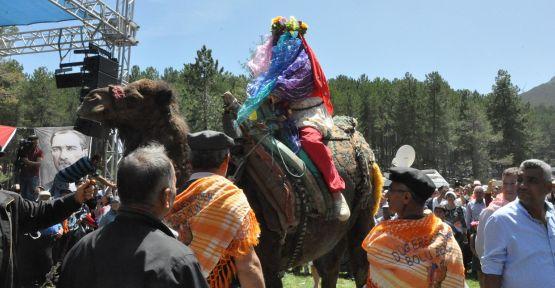 Yörük Türkmen Şenliğinde deve sırtında gelin alma geleneği canlandırıldı