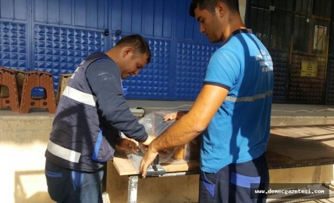 Büyükşehir Muğla'nın balına sahip çıkıyor