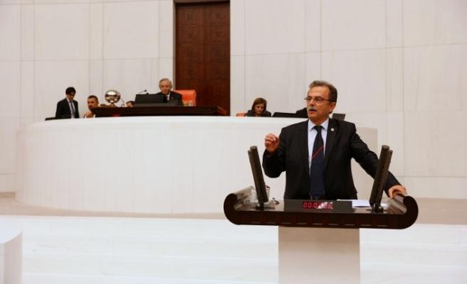"""CHP'li Girgin, """"Muğla'da neden kenevir üretimine izin verilmiyor?"""""""
