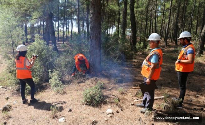 Orman işçisi mesleki yeterlilik belgelendirme sınavları başladı