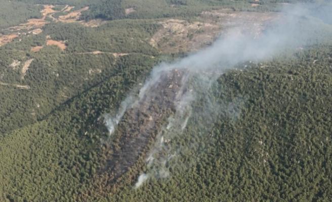 Orman yangını güçlükle kontrol altına aldı