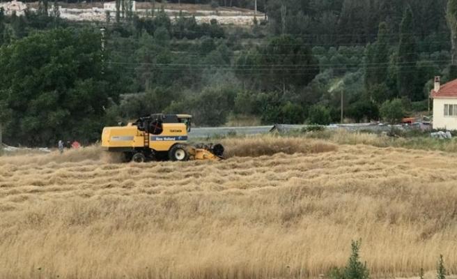 Kavaklıdere Belediyesi'nden tarımsal atak