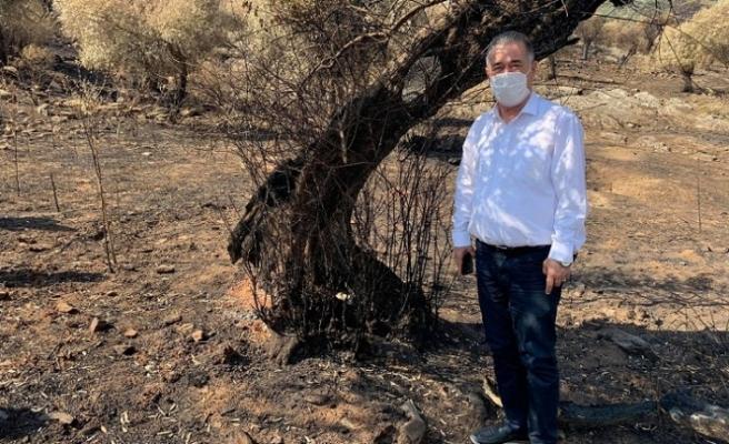 CHP'li Özcan, orman yangınlarının peşini bırakmıyor!