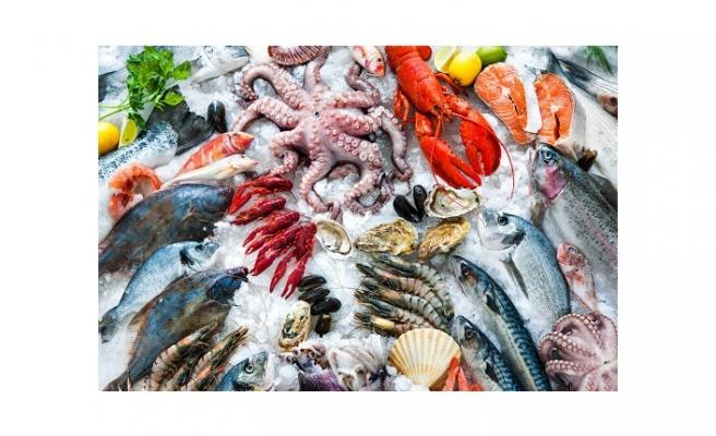 Gıda harcaması içerisinde en fazla payı et, balık ve deniz ürünleri aldı