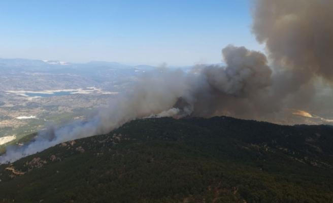 Gökbel Dağı'nda 20 hektar kül oldu