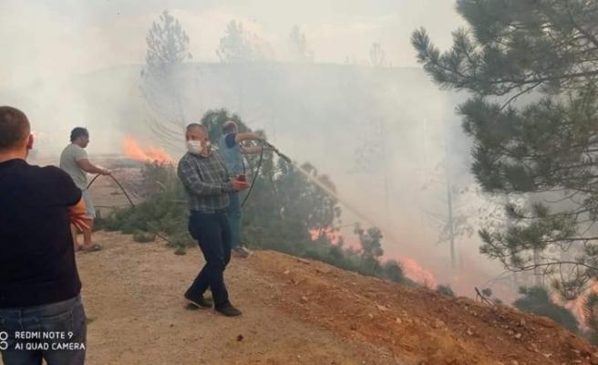 Kavaklıdere'de 3 hektar ormanlık alan yandı