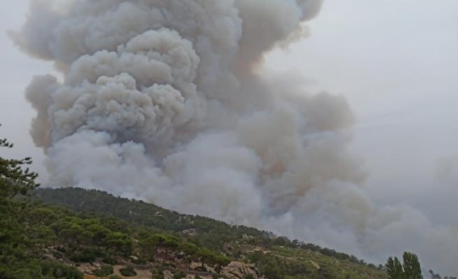 Hacıveliler Mahallesi'nde başlayan yangın kontrol altına alındı