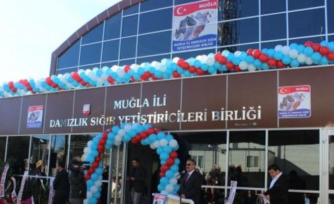 Muğla Damızlık Sığır Yetiştiricileri Birliği'nin yeni hizmet binası açıldı