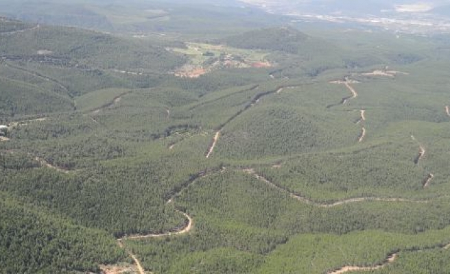 Ormanlara Otlatma Denetimi
