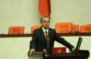 CHP'li Girgin, arıcıların sorunlarını meclis...
