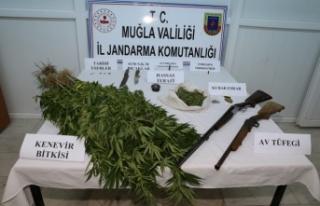 Jandarmanın uyuşturucu ve tarihi eser operasyonunda...