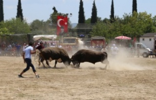 Bayır Arena, kıran kırana güreşlere sahne oldu
