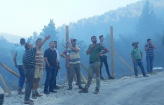 Kavaklıdere'de 1 hektar orman kül oldu