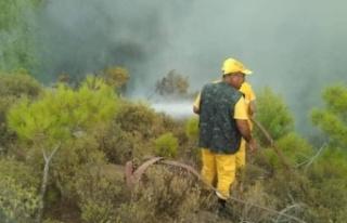 Yatağan ve Menteşe'de aynı anda 3 orman yangını