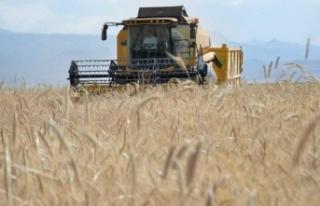 Tarım-ÜFE yüzde 1,59 arttı