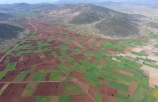 Aydın, Denizli ve Muğla'da 269 bin 647 dekar tarım...