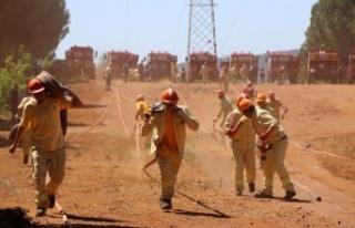 Muğla'da yangın ekipleri iş başı eğitimleri...