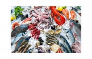 Gıda harcaması içerisinde en fazla payı et, balık...