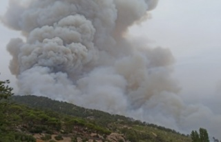 Hacıveliler Mahallesi'nde başlayan yangın kontrol...