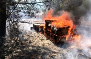 """Milletvekili Ergun: """"Yangınlar arıcılık sektörü..."""