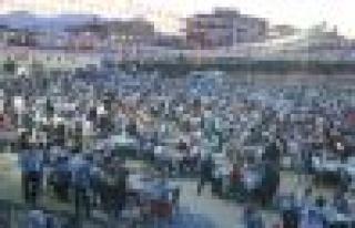 AK Parti'den futbol sahası dolusu vatandaşa iftar
