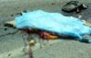 Doğum Gününde Trafik Kazasında Öldü