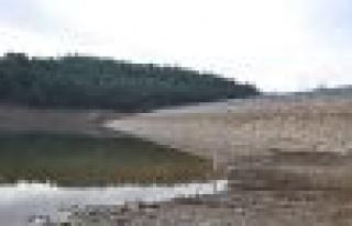Kazan Göleti'nde Su Kalmadı!