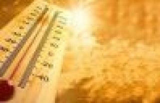 Yatağan'da Sıcak Hava ve Neme Dikkat
