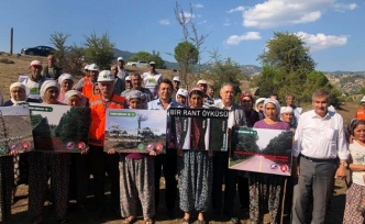 CHP'li Alban'dan fıstık çamlarının kesilmesine tepki