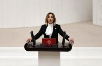 Gökcan, Kılıçdaroğlu'nun iddiasını TBMM gündemine taşıdı