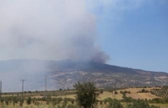 Gökbel Dağı'nda orman yangını!