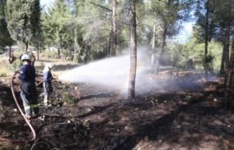 Yatağan'da sokağa çıkma yasağında orman yangını!