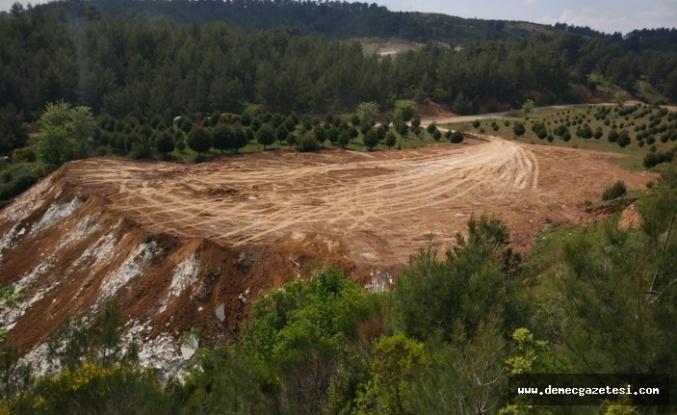 Mermer atılan saha, ormancılar tarafından yeşertilecek