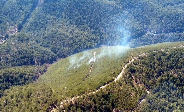 Yatağan'da orman yangını
