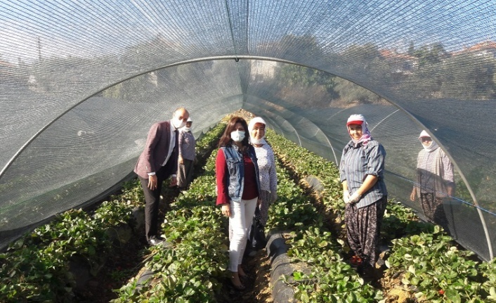 Dünya Kadın Çiftçiler Günü'nde kadın üreticilere anlamlı ziyaret